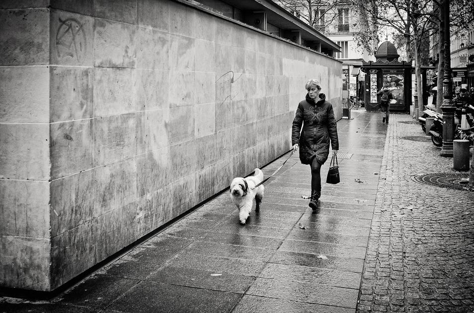 La dame au chien