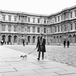 Promenade royale pour le petit chien