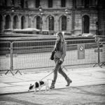La balade du petit chien