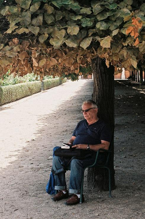 Sous mon arbre, je pense ou je lis