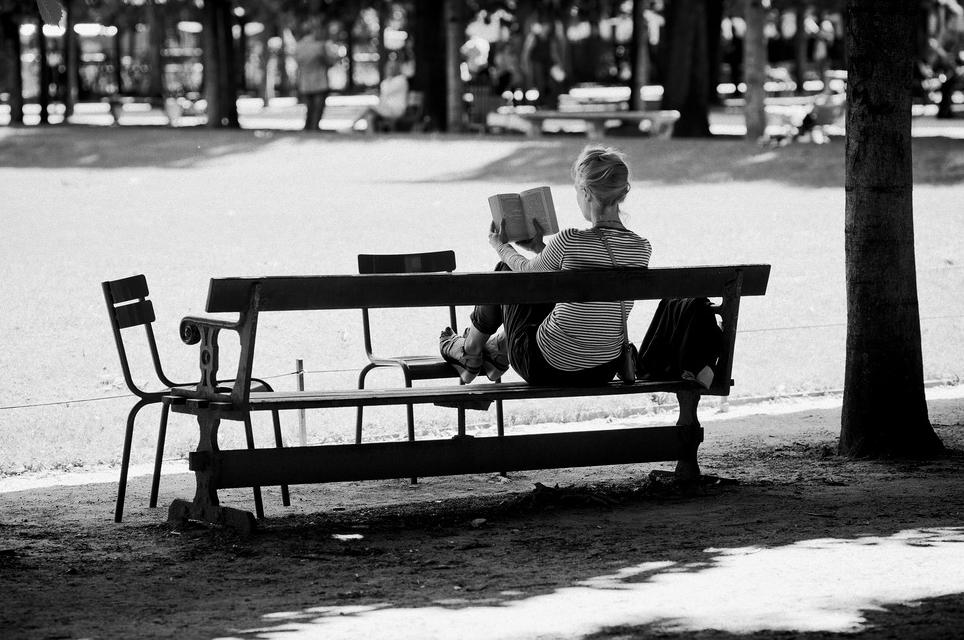 Seule sous mon arbre, je lis