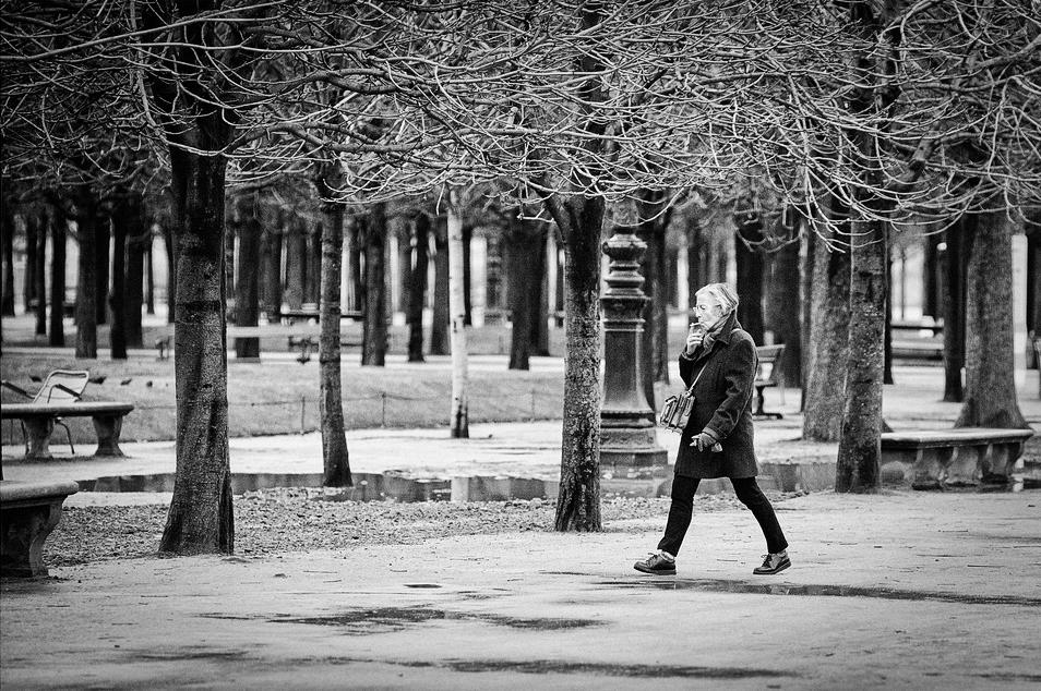 Dans la rigueur de l'hiver