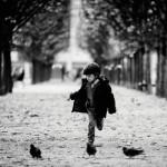 Courir après les oiseaux