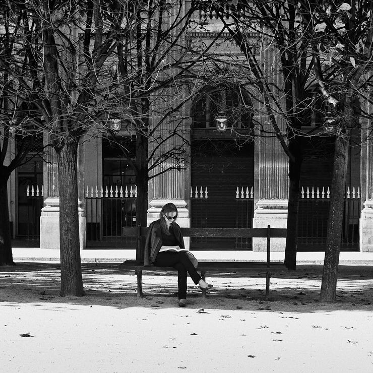 Lecture à l'ombre