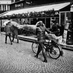 Transport de sapin
