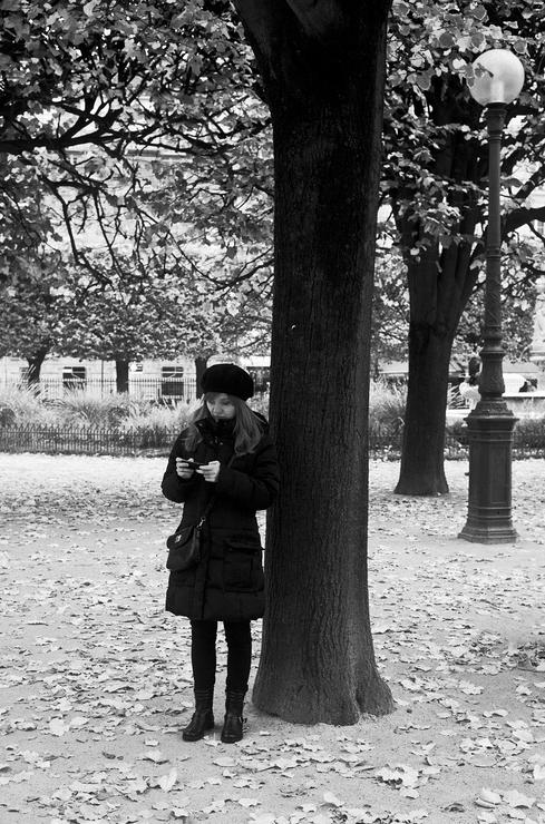 Message sous l'arbre