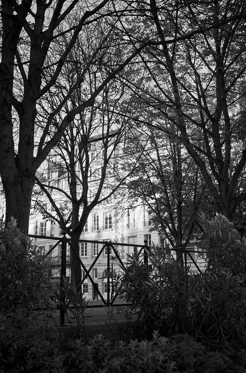 Végétation Parisienne