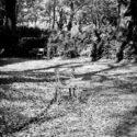 Chaises et feuilles mortes se ramassent à la pelle