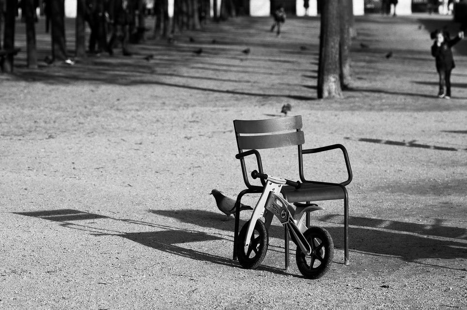 Le vélo en bois
