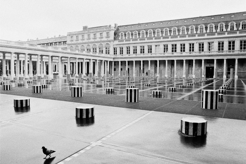La cour d'honneur du Palais-Royal après la pluie