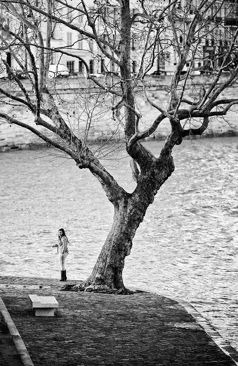 Seule près de son arbre