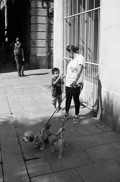 La maman, le bambin et les deux chiens