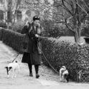 Une femme et ses deux chiens