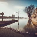 Au bord du fleuve