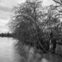 Les berges du square Barye sont sous l'eau