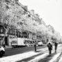 Boulevard Saint Michel / Neige