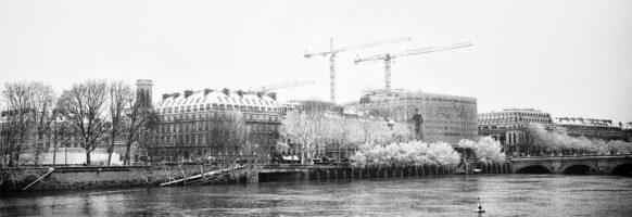 Les grues, la Seine et la neige