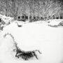 Jardin du Palais-Royal sous la neige / Banc immaculé