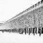 Jardin du Palais-Royal sous la neige
