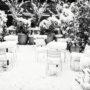 Puteaux / Terrasse en hiver