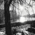 La neige au soleil