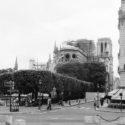 Le chantier de Notre-Dame