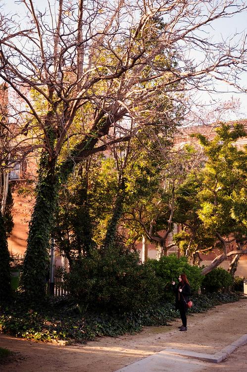 Barcelone / Parc de la citadelle / Hiver