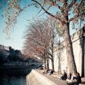 L'automne en bord de Seine